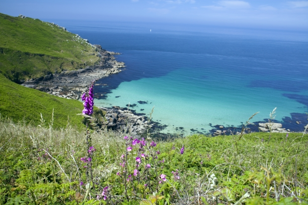 Cornwall 8 - Copy.jpg