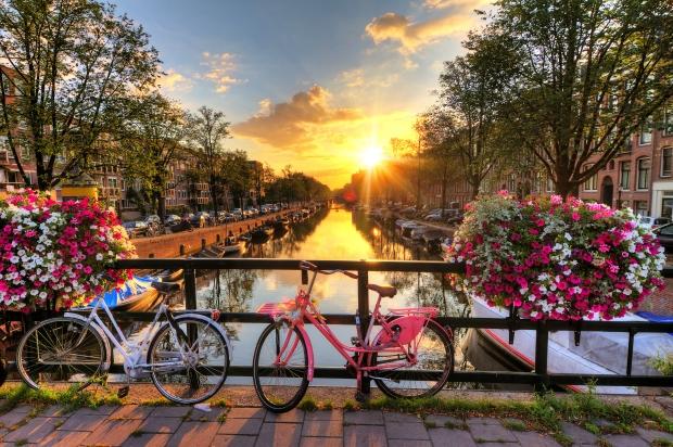 Amsterdam flowers.jpg